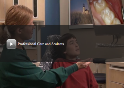 Professional Care and Sealants